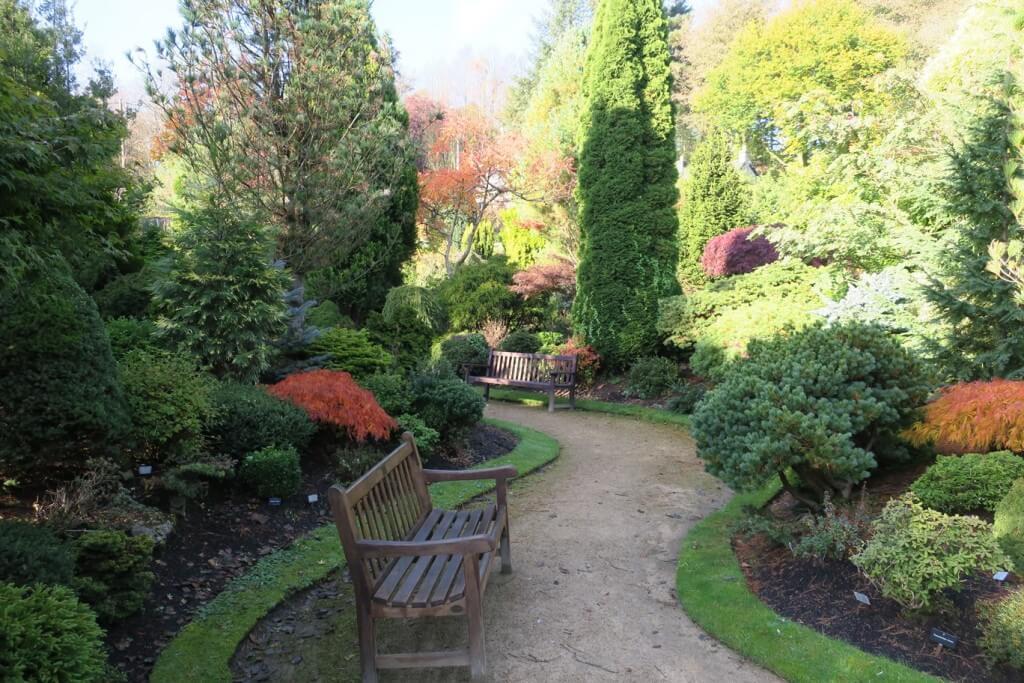 autumn in Colzium house walled garden